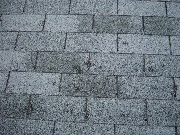Hail Storm Hart Roofing